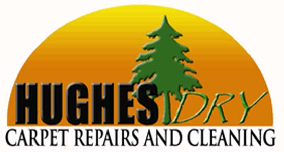 Hughes Professional Carpet Cleaning Inc A Guaranteed Carpet Upholstery Tile Grout Cleaning Company In Atlanta Five Star Rated